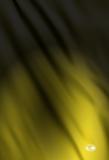01-Banner-19Yellow-sml